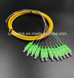광학 섬유 케이블 섬유 연결관 12 코어 뭉치 떠꺼머리 Sc/APC G652D