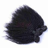 Lab Factory Indian Virgin Kinky Curl Bundles 100 % de cheveux humains