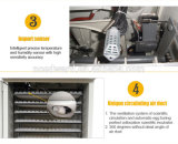 Tenendo l'incubatrice automatica dell'uovo delle 528 uova per la covata delle uova del pollame