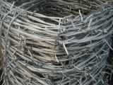 Cuadros galvanizados de la cerca del alambre de púas del edificio de la cerca de alambre