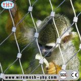 高力304ステンレス鋼の動物園の網