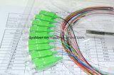 tipo de acero óptico divisor del tubo 1X8 del PLC óptico/divisor óptico de fibra