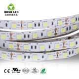 Горячая продажа высокое качество светодиоды 60/120/M SMD 5050 RGB LED газа на складе