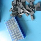 Il carburo capovolge Ss10 per l'industria di pietra di taglio