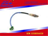 Sensores del oxígeno de las piezas de automóvil, OEM: 0258006028 modelos aplicables: Muestras/Byd, etc