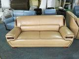 Sofa en cuir italien véritable des premières graines, les meilleurs meubles à la maison (A838)