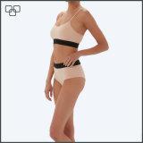 Bikini brésilien de vêtements de bain plus le maillot de bain de taille
