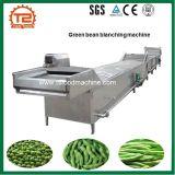 Grüne Bohne, die Maschine bleicht und vorkocht