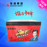 batterie superbe de véhicule électrique de qualité d'impression de 6-Dzm-20 (12V20AH) Dongjin Sik