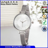 주문 로고 시계 사업 합금 가죽 시계 (WY-135B)