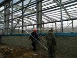 錆の証拠の養鶏場のマルチスパンの鉄骨構造の建物