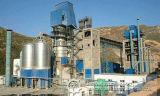 Tonnellata professionale Manufacture100-3000 per linea di produzione del cemento di giorno