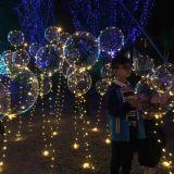 منطاد [لد] عيد ميلاد المسيح خيط ضوء مع [بولس]