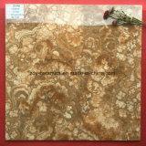 Azulejo de suelo de piedra esmaltado Jinggang hermoso del material de construcción