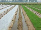 Tessuti non tessuti agricoli