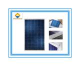 Heißer polykristalliner Silikon-Sonnenkollektor des Verkaufs-150W mit hoher Leistungsfähigkeit