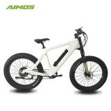 Bicicletta elettrica della batteria nascosta bici grassa elettrica poco costosa del freno di Hydralic dello AMS-Tde-Sr