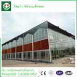農業ガラスかトマトまたはフルーツのためのガラス温室を和らげること