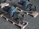Bomba rotatoria del lóbulo del acero inoxidable