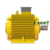 Libre de mantenimiento de precios baratos de generador de imán permanente bajo régimen.