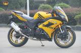 냉각되는 200cc 250cc 공기 기관자전차 경주