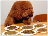 De hoogste Populaire Producten van het Huisdier van de Hondevoer van de Fabriek Directe Droge