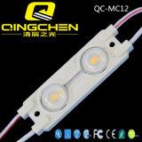 Niederspannung 12V imprägniern SMD5050 für lineare Baugruppe der Reklameanzeige-LED