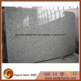 Lastra di superficie Polished all'ingrosso del granito G439