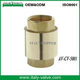 Valvola di ritenuta d'ottone certificata pezzo fucinato della molla di qualità (AV-CV-5001)