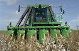 Dobro Beterraba-Crescente da maquinaria agricultural do equipamento/único cilindro hidráulico ativo