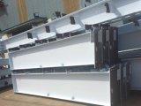 De geprefabriceerde Lichte Opslag van het Huis van de Structuur van het Staal