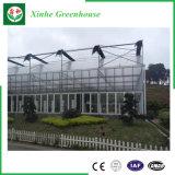Serra di verdure di vendita della Cina della serra calda del policarbonato con il sistema di raffreddamento