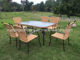 7pcs en rotin tissé Steel Tube Table et chaise costume
