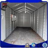 Costruzioni del metallo di prezzi e di alta qualità di fabbrica per il garage (Q235)