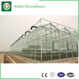 販売のためのAgticultureのプラスチックガラス野菜温室