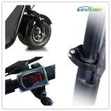 Ecorider Harleyの電気スクーターCitycoco
