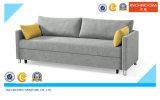 Bâti de sofa de meubles de maison de sofa de salle de séjour