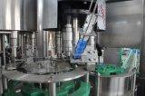 De automatische Roterende Hete het Vullen Machine van het Sap van de Fles van het Huisdier