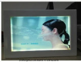 Yashi America USA case Transparent Écran LCD OLED
