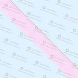 Het goedkope Enige/Dubbele Nylon van het Gezicht en Lint van het Satijn van de Polyester het Duidelijke