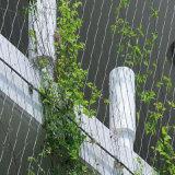 上昇のプラントサポートのための緑の壁のステンレス鋼ケーブルの網