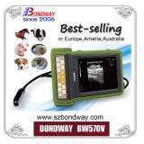 Animais de exploração da máquina de ultrassom de digitalização de gravidez, portable, portátil, scanner de ultra-sons veterinários USG, equipamento médico de ultra-som, sonda ultrasónica