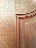 Molde SMC Doorskin