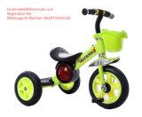 La bici del passeggiatore dei tre carrai gioca il triciclo del bambino dei capretti