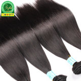 Straight 100% Brazilian Human Low Price Remy To hate Weft
