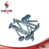 Umberlla Head Roofing Nails 또는 Umbrella Roofing Nails