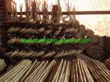 U-Hoop cañas de bambú Baoboo bastones para la Agricultura