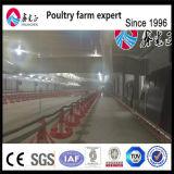 Equipamento de exploração agrícola automático da galinha para a grelha