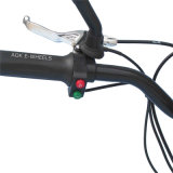 Scooter de pressão elétrico dobrável 500W ~ 1500W com travão de disco (MES-800)