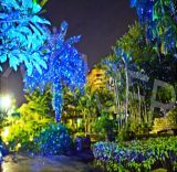 2018 het Licht van de Laser van het Huis van de Lichten van Kerstmis toont Projector